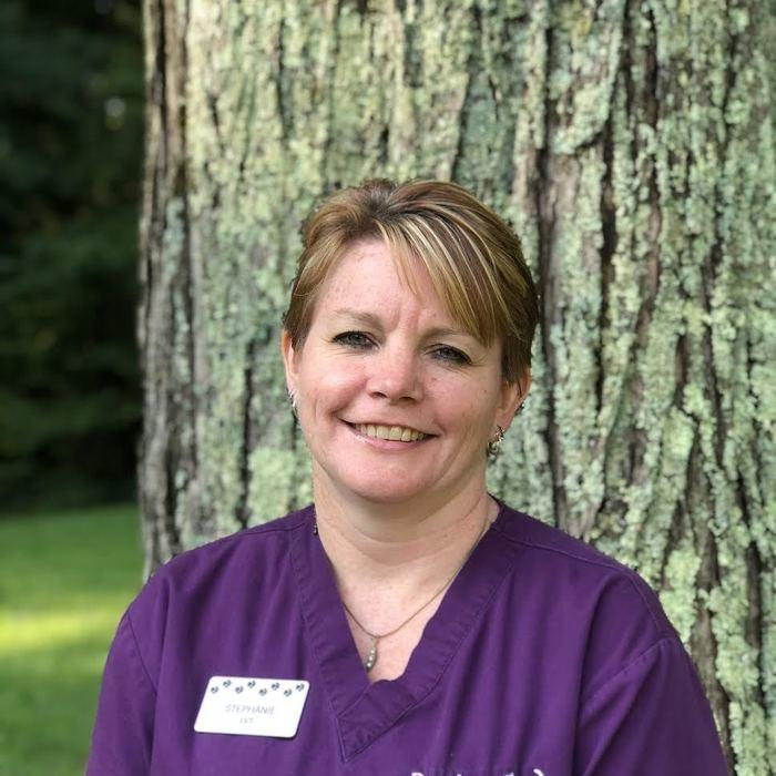 Stephanie<br>Licensed Veterinary Technician  photo